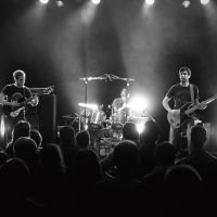The Ringo Jets, The Wooden wolf et Electric worry